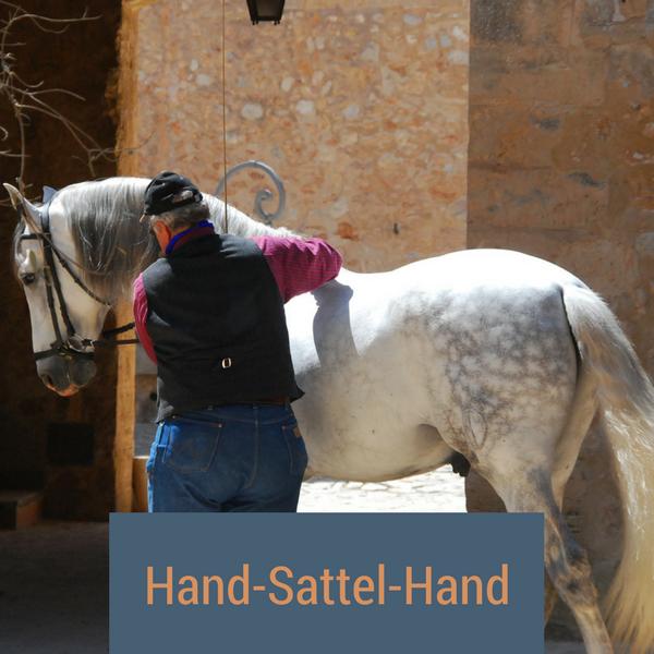 Hand-Sattel-Hand-Methode