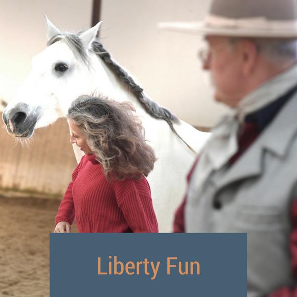 Liberty Fun